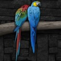 Blue Loving Birds Couple