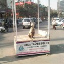 New Noida Traffic Police