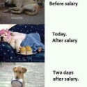 Salary Is Most Important Thing in Life