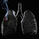 Smoking Lungs – Creative Ad For Saving Your Lungs