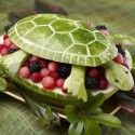 Turtle Water Melon Art