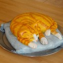 Lovely Cat Cake