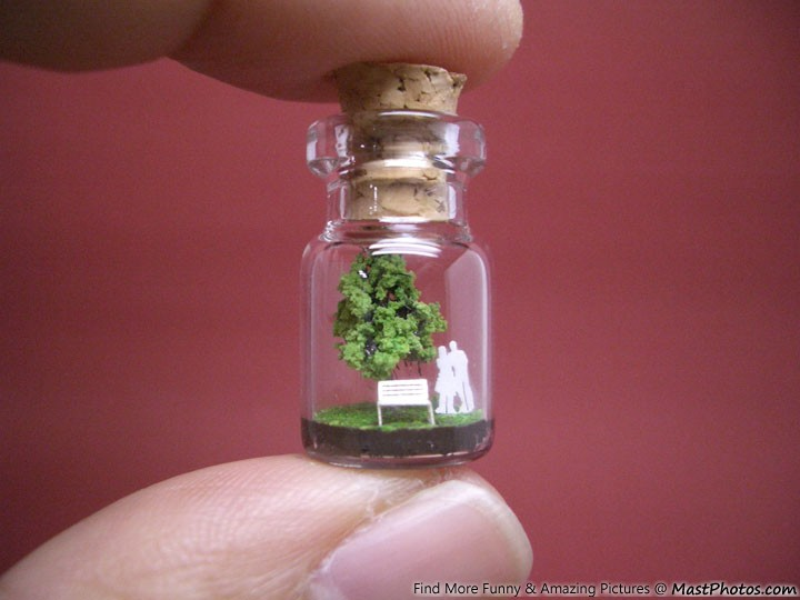 Micro Artwork – Tree Inside A Bottle