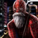 Spider Man After Retirement