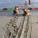 ABS Braking Explained