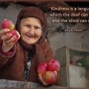 Kindness Is A Ultimate Language