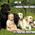 Gained Their Trust By Pooping Everywhere