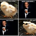 James Bond Trolled