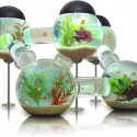 The Coolest Fishbowl Ever