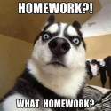 Homework, What Homework?