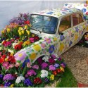 Who Want This Garden Car?