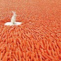 Rabbit In Heaven