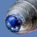 Close Up Of A Ball Point Pen