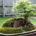 A Miniature Hobbit House, With A Stunning Bonsai
