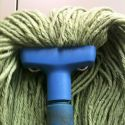 Angry Mop Found In My Backyard