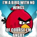 Why They Are Called Angry Birds?
