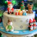 Beautiful Santa Cake For Christmas 2013