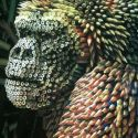 Gorilla Made Of Colorful Pencils
