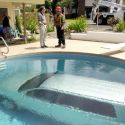 This Is How To Wash A Car In Swimming Pool