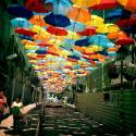 Beautiful Floating Umbrella Street in Agueda