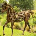 Drift Wood Art – A Horse Made From Driftwood