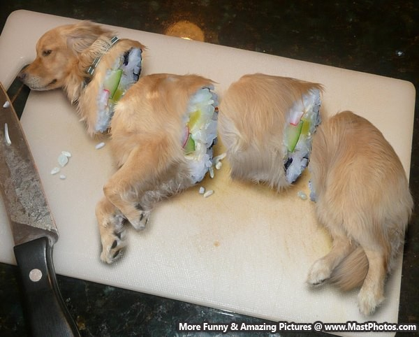 Awesome But Scary Dog Cake