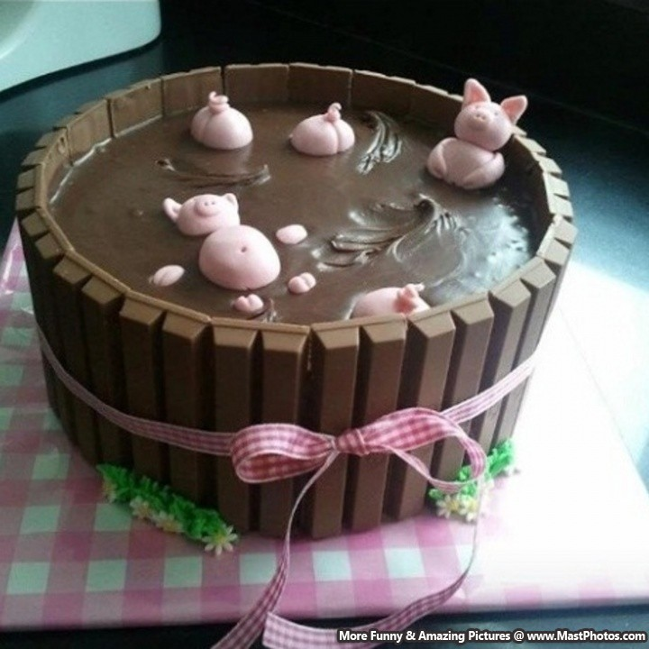 how to make a cat cake awesome pigs cake 4945